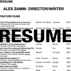 Alex Zamm's Resume